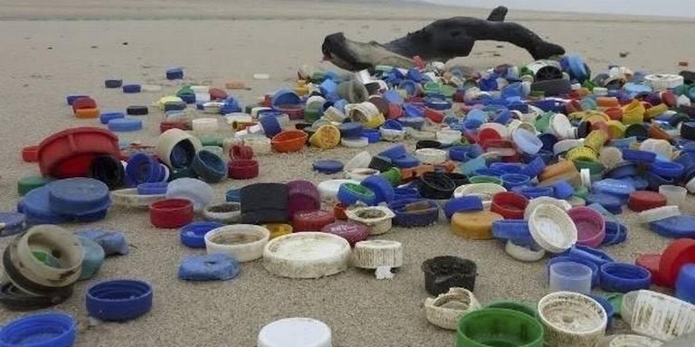 Plastic doppen vervuiling Noordzee