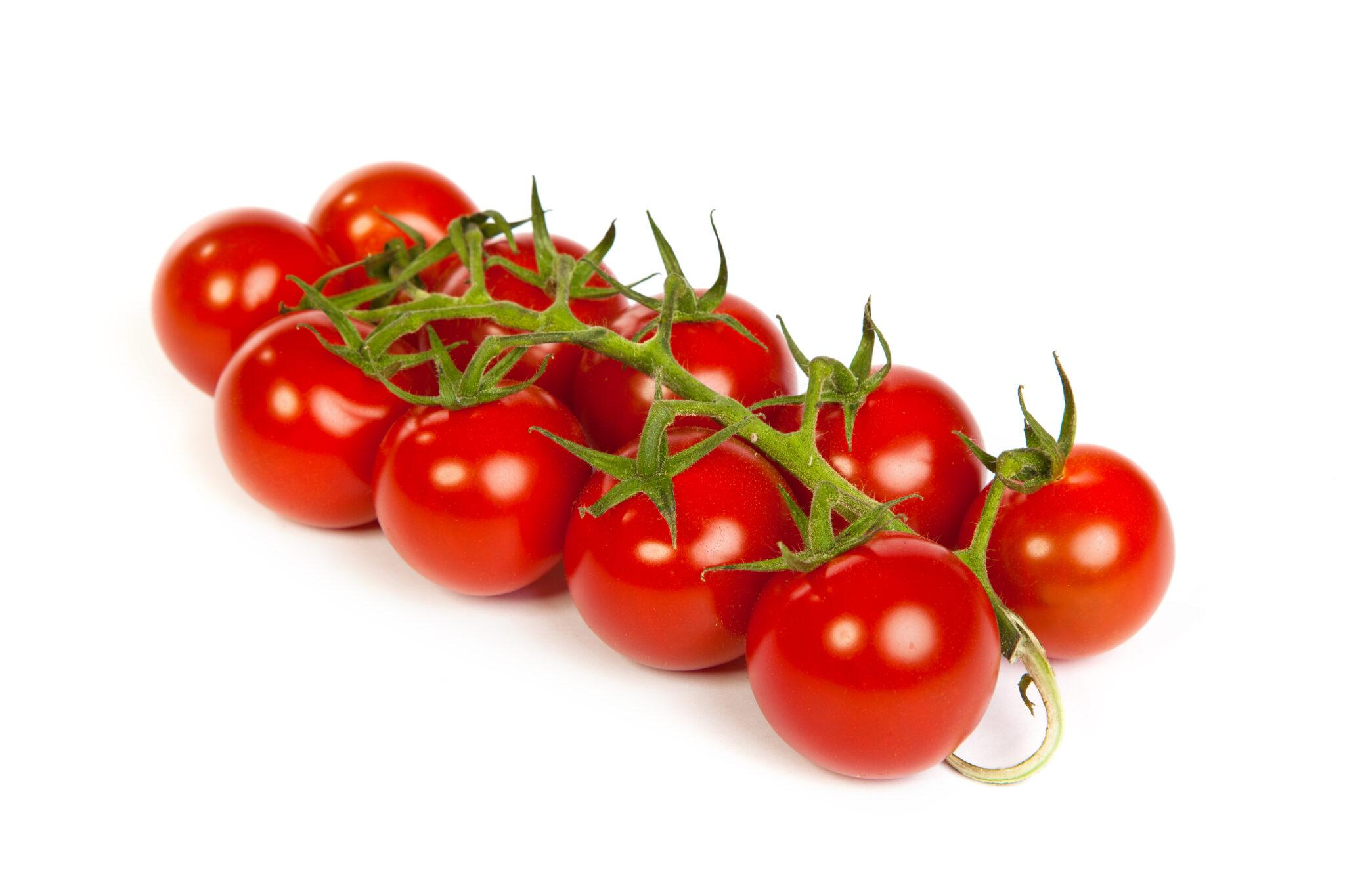 Tomatoes_(copy_2)